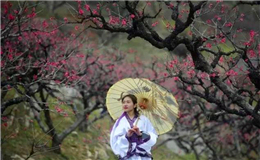 Wengyuan: The Land of Peach Blossoms