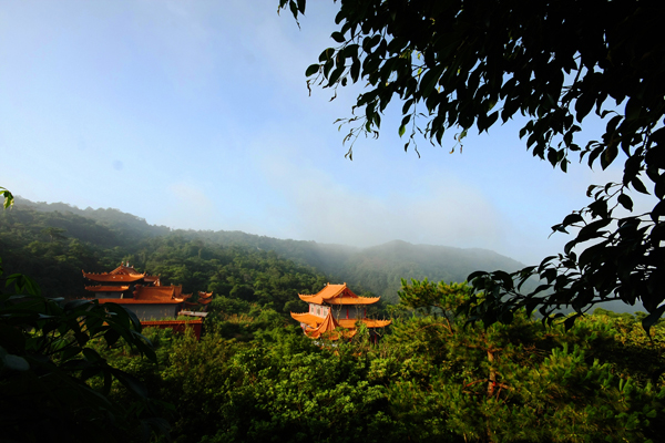 National Forest Park of Guanyin Mountain
