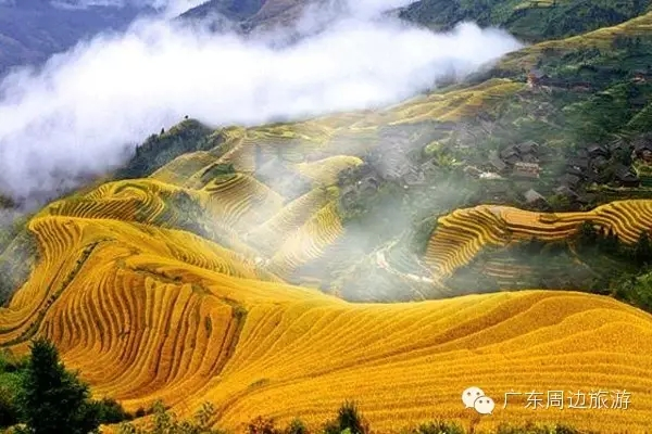 Terraced fields in Guangdong: only magnificent views, no crowds
